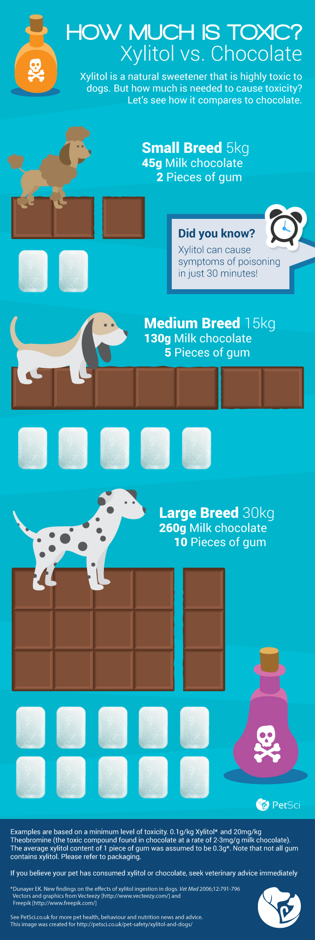 Xylitol and dogs toxicity graphic