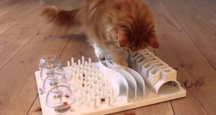 cat-food-puzzles