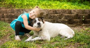 Child hugging dog