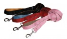 top gadgets for travelling on holiday with your dog lead leash