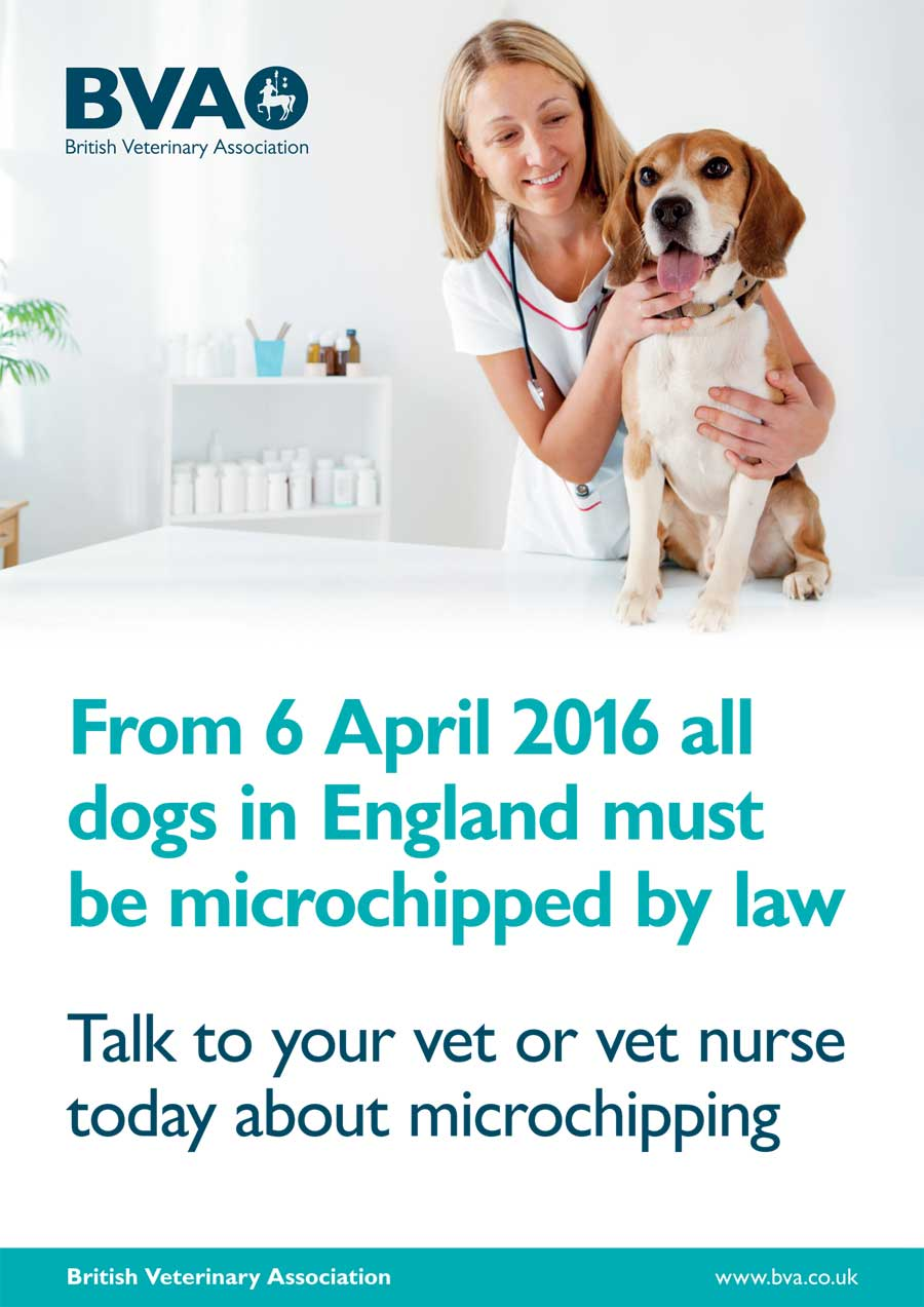 Microchipping Dogs BVA Poster