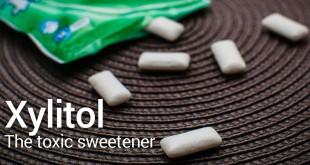 Xylitol - the toxic sweetener