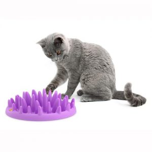 interactive cat food puzzles