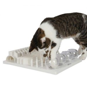 Cat food puzzles activity board